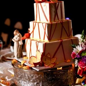 Cake_029
